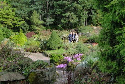 Ботсад, сад камней. Эдинбург.