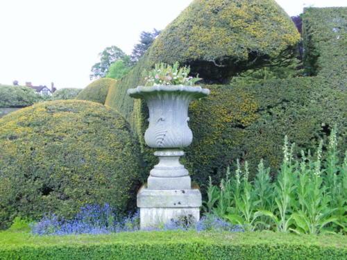 Ascott garden 11