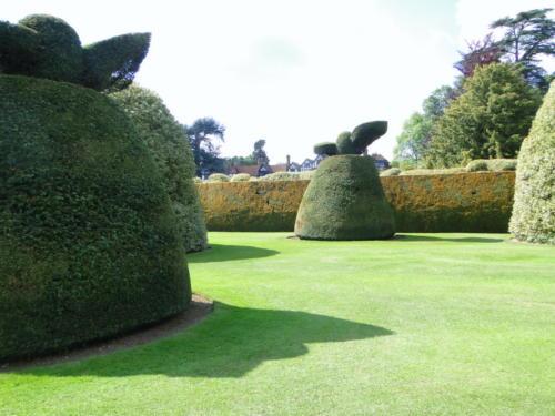 Ascott garden 13