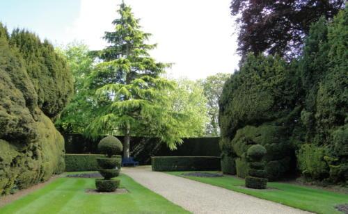 Ascott garden 19