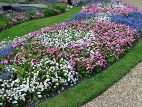 Ascott garden 21